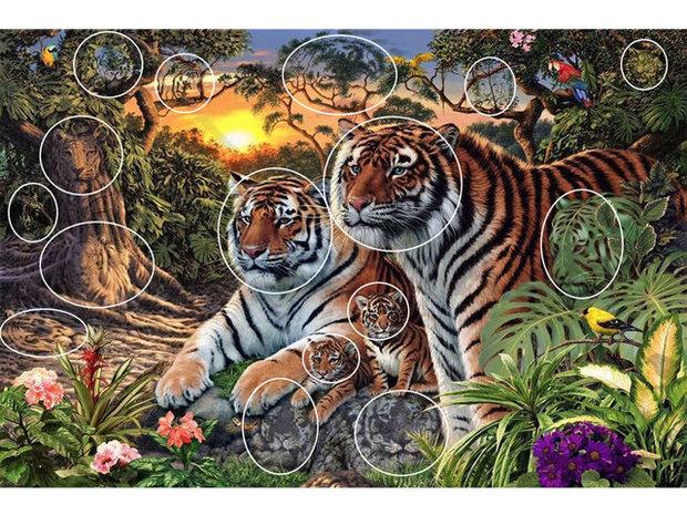 Řešení: Tygři. Foto: