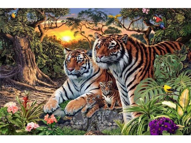 Kolik vidíte tygrů? Foto: