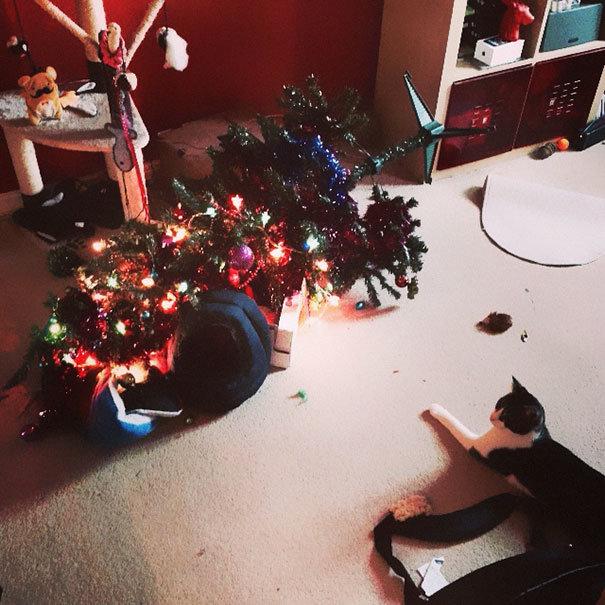 Božínku, omdlel nám stromeček!  Foto: