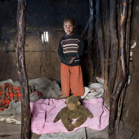 Tangawizi, Keňa  Foto: