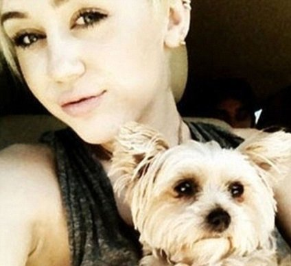 Miley Cyrus s Lilou Foto: twitter