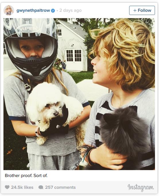 Dcera Gwyneth Paltrow - Obrázek 2 Foto: