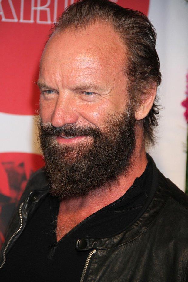 Je to Sting nebo Rumcajc?! Neuvěříte, jak teď slavný zpěvák vypadá! - Obrázek 2 Foto: